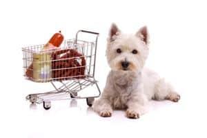 Kleiner weisser Hunde mit Einkaufswagen - Hundefutter online kaufen
