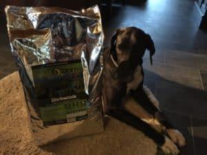 Jette testet - Wildborn Hundefutter Test - Blackwoods
