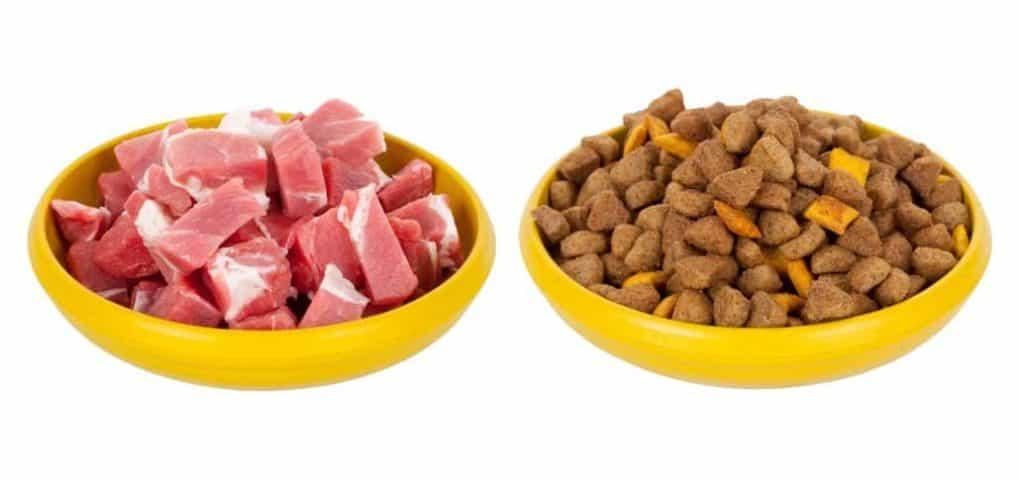 Fleisch und Trockenfutter