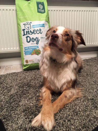 Mira und Green Petfood