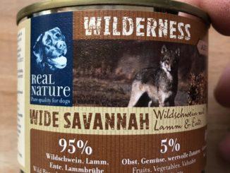 Real Nature Wilderness Wide Savannah