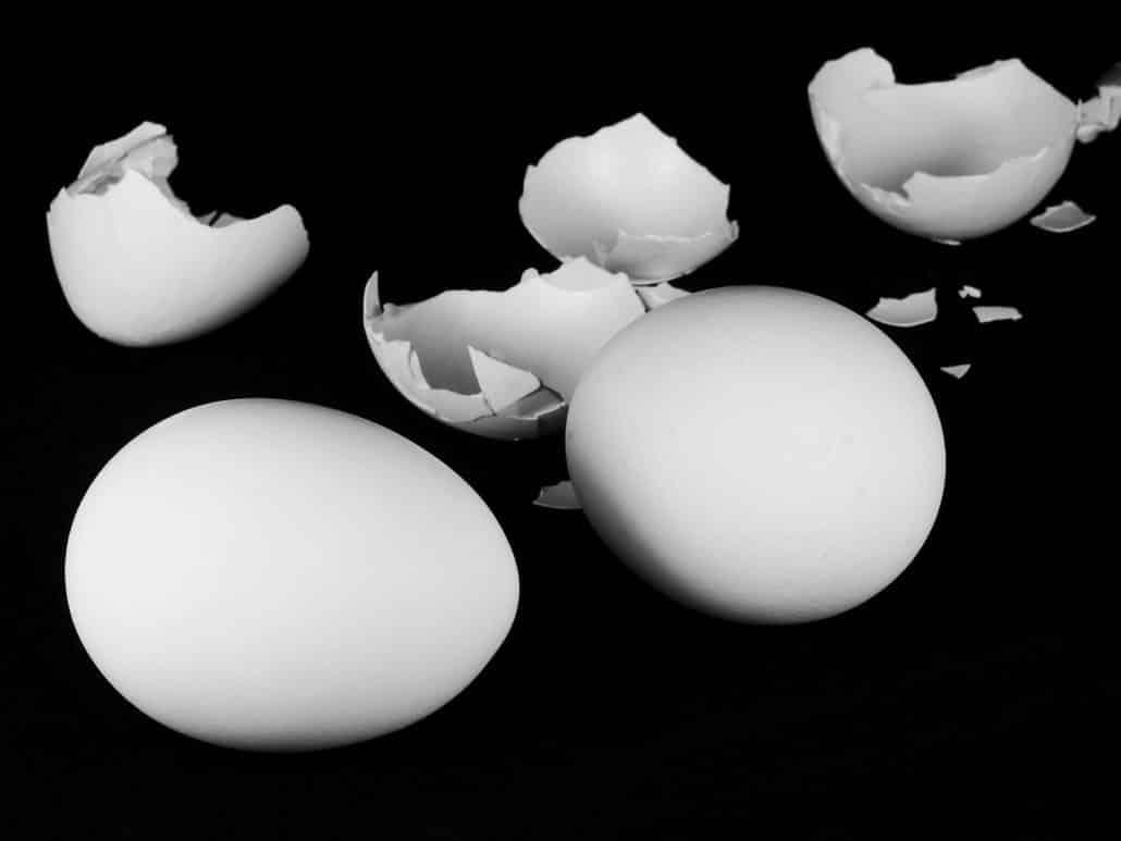 Eierschalenpulver als BARF Zusatz