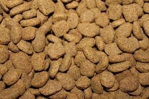Trockenfutter mit Getreide